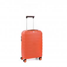 Маленький чемодан Roncato Box Young  5543/4282